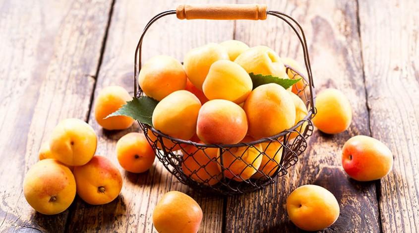 Uzbek apricots — photo 1