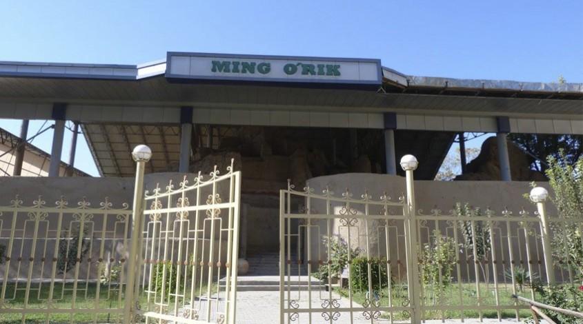 Городище Минг Урик — фото 1