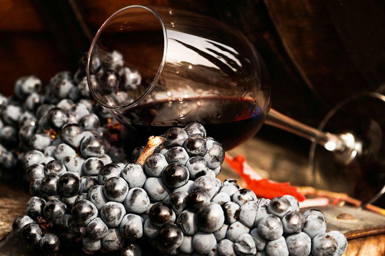 vina uzb